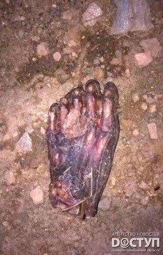 18+. Части трупа с аномалиями обнаружены в Карабаше