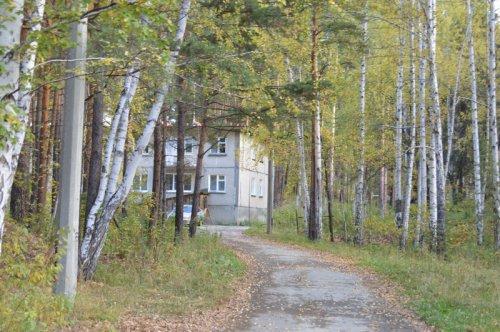 Дом в лесу без тепла не останется