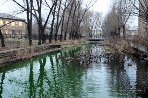 Названа причина, почему в Кыштыме позеленела речка