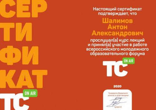 В Озерске начнут развивать «культурное» волонтерство на счет Федерального гранта